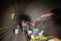 Cranberry & Rutgers Tube